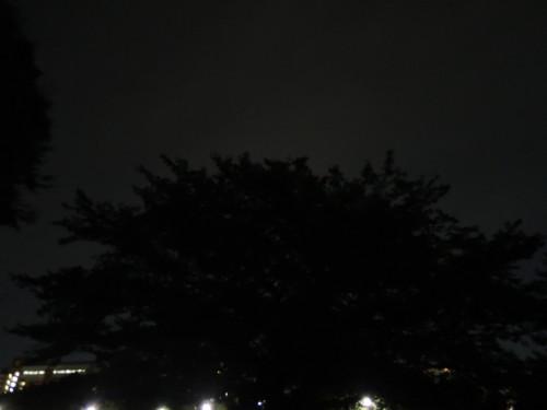 DSCN1301